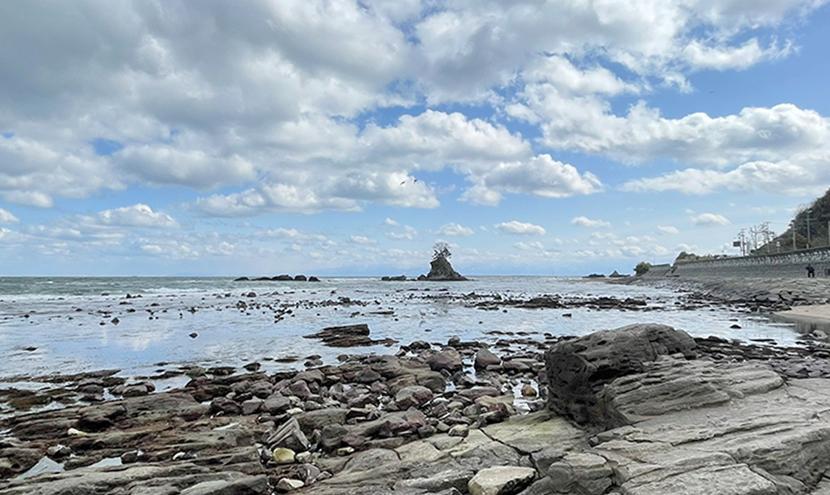雨晴海岸の女岩。網戸(快適ネット)からの絶景、富山の雨晴海岸と道の駅。よく見える網戸快適ネット張り替えなら三恵ネット。