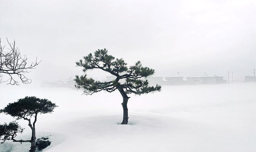 濃霧でも網戸(快適ネット)はスッキリ見える快適ネットなら三恵ネット。
