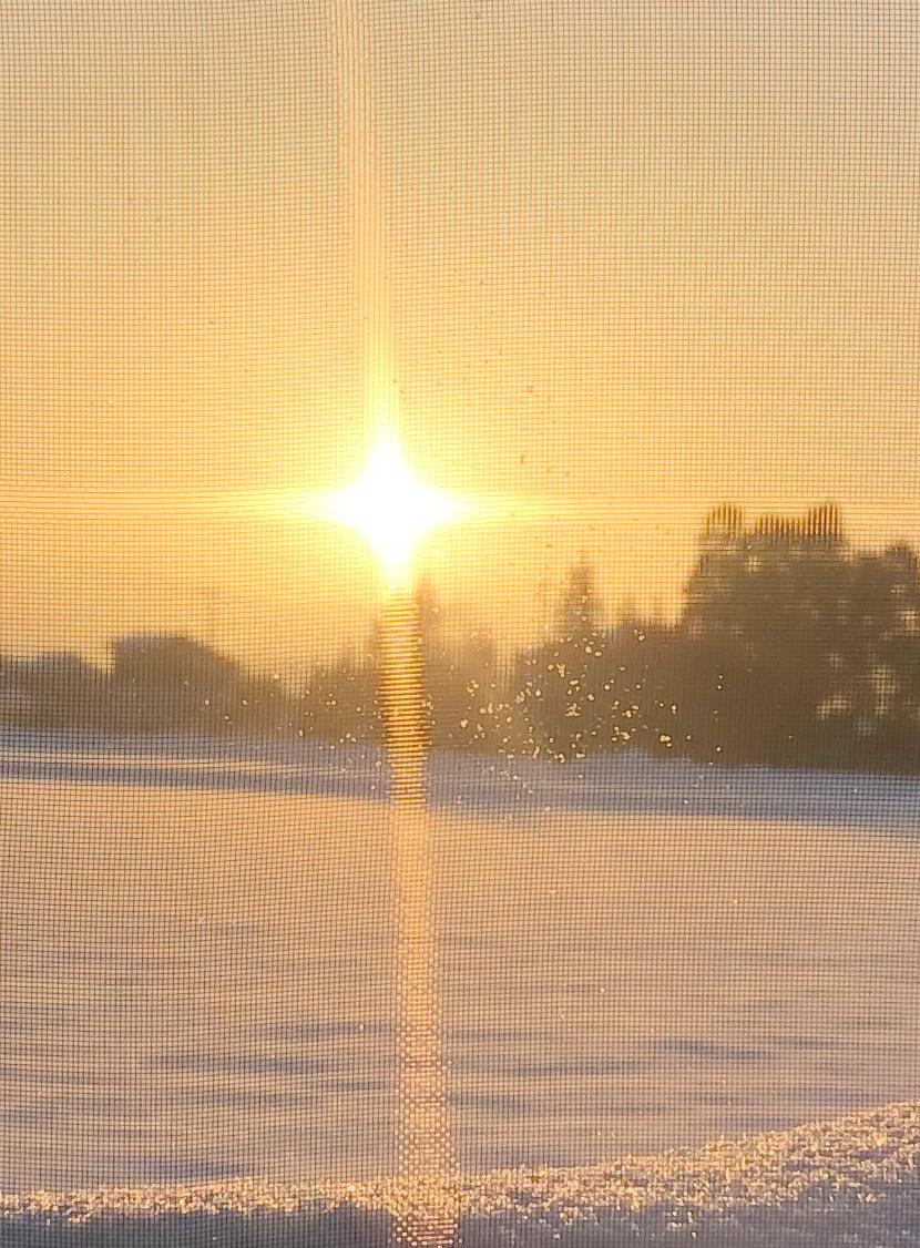 雪に映える朝日とスッキリ見える網戸。細かい網目なので水滴も見える。スッキリ見える快適ネットなら三恵ネット。
