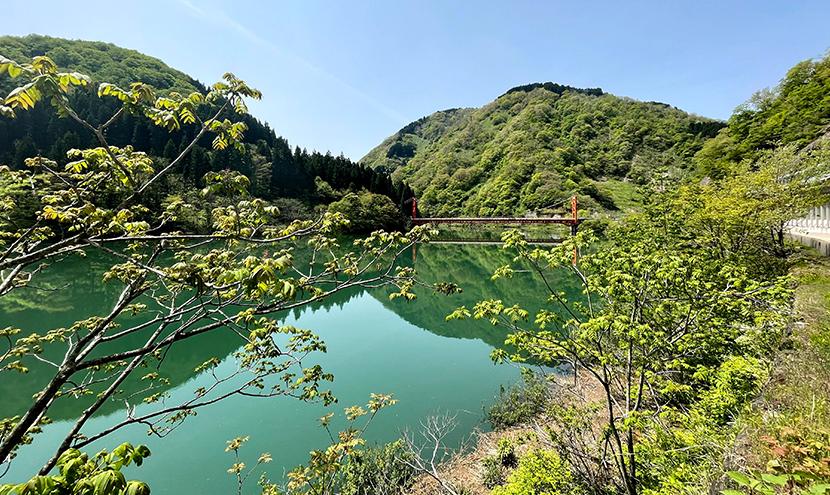 祖山ダム湖に架かる大渡橋、網戸快適ネットからの景色。よく見える網戸快適ネット張り替えなら三恵ネット。